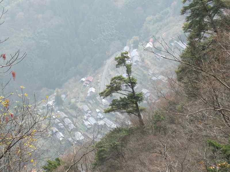 椿山から栗見へ_c0109133_21444998.jpg
