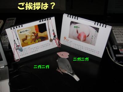 b0158061_21201199.jpg