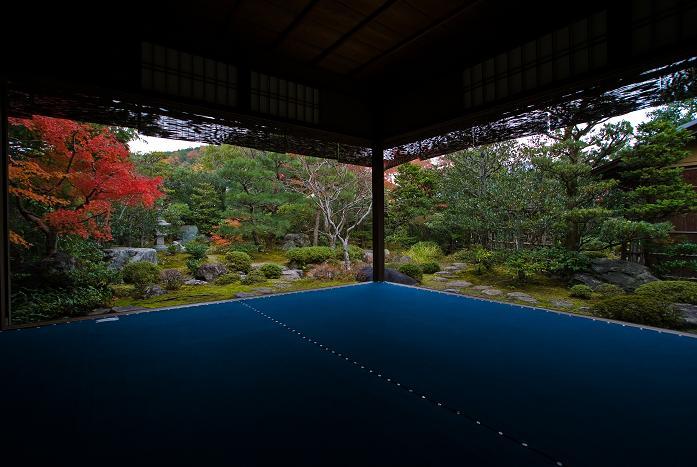 西村家庭園_f0102363_22464782.jpg