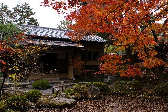 西村家庭園_f0102363_22471717.jpg