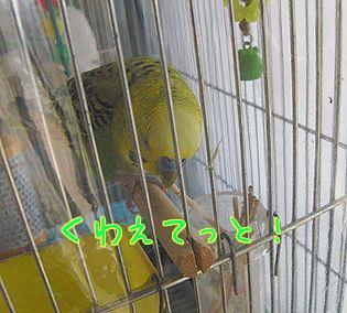 f0196665_038223.jpg