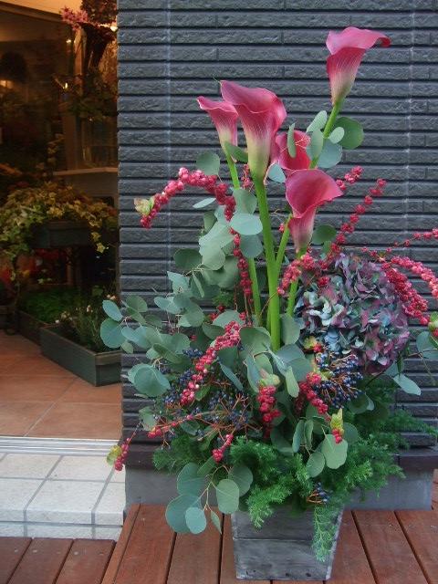 オークリーフ(まことやさん独立お祝いの花)_f0049672_1603100.jpg