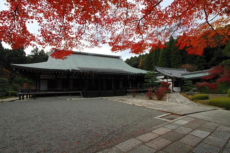 苔寺(西芳寺)_e0051888_1583865.jpg