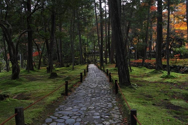 苔寺(西芳寺)_e0051888_159079.jpg