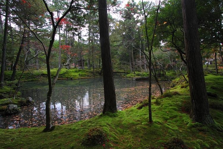 苔寺(西芳寺)_e0051888_1595727.jpg