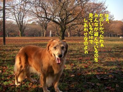 f0118135_20543862.jpg
