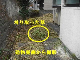 f0031037_1905577.jpg