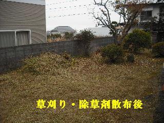f0031037_191929.jpg