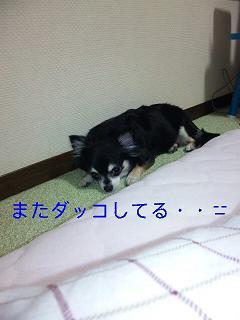 c0121141_13481271.jpg