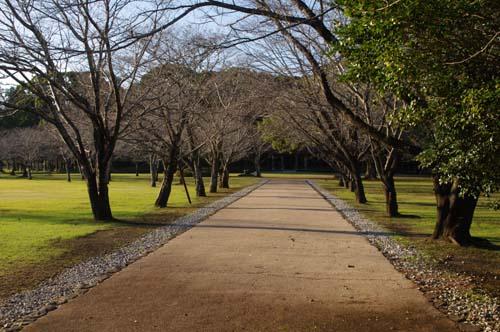 秋の九州古代文化の旅で見たこと   第5日 _e0187146_15423138.jpg