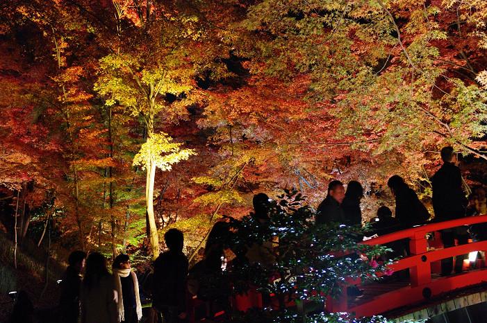 2009紅葉 Ⅸ 北野天満宮ライトアップ_f0152550_21332346.jpg