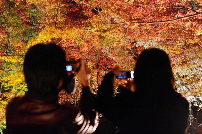 2009紅葉 Ⅸ 北野天満宮ライトアップ_f0152550_21333123.jpg