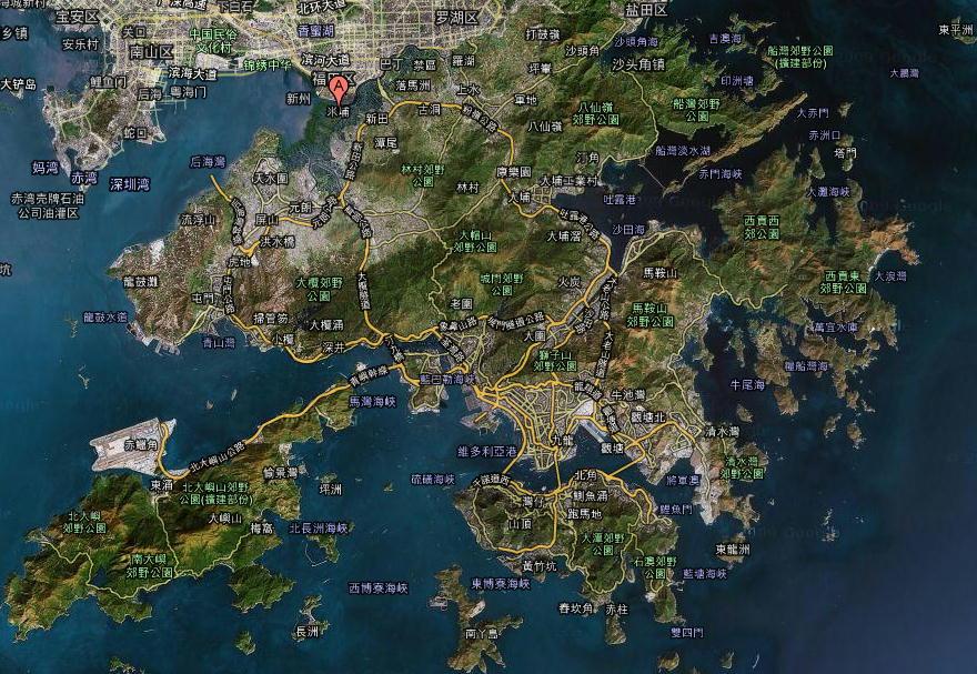 香港の野鳥  091120 Mai Po訪問時 その1_a0146869_0125948.jpg