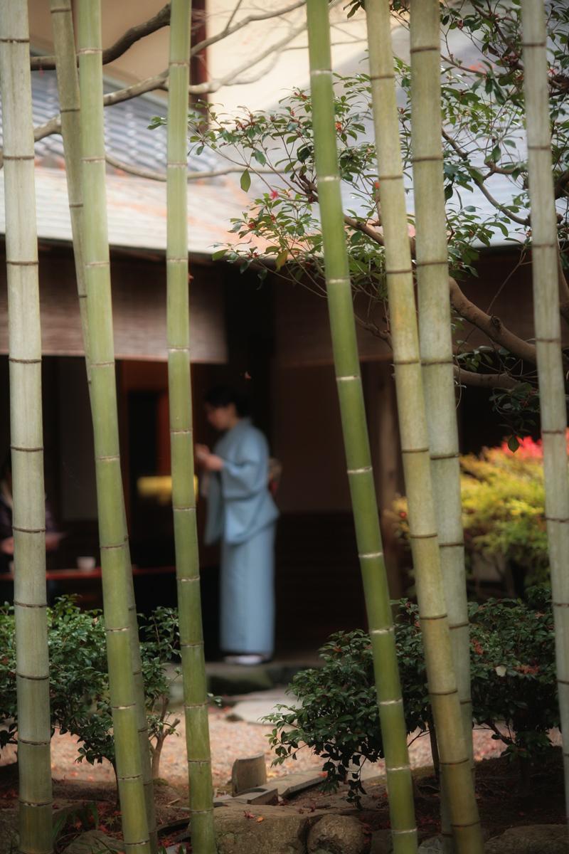 京都スナップ  1_f0021869_12361021.jpg