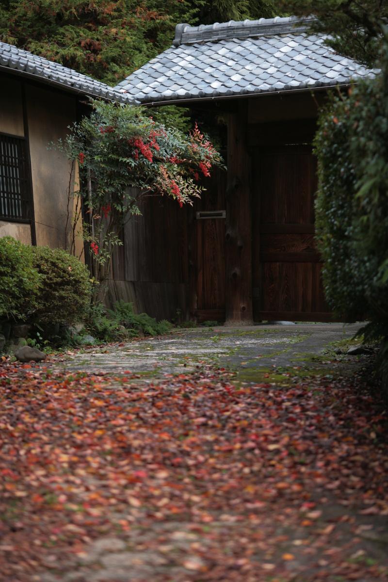 京都スナップ  1_f0021869_12383313.jpg