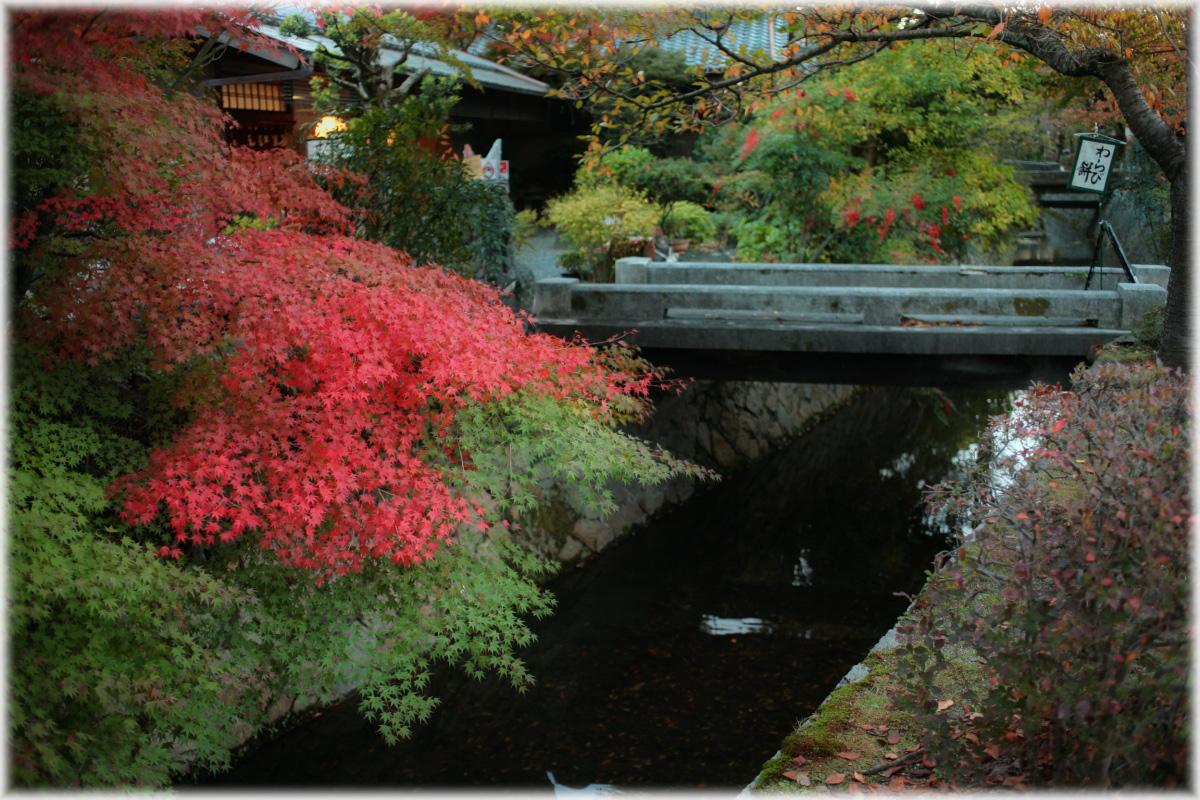 京都スナップ  1_f0021869_12513461.jpg