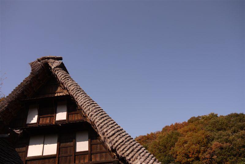 古民家と紅葉(生田緑地)_b0175688_1528362.jpg