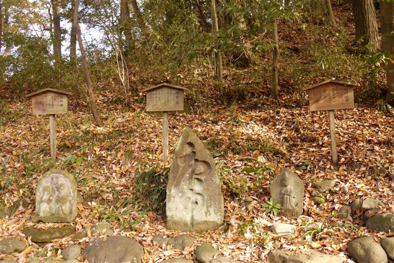 古民家と紅葉(生田緑地)_b0175688_1531479.jpg