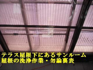 f0031037_19343972.jpg