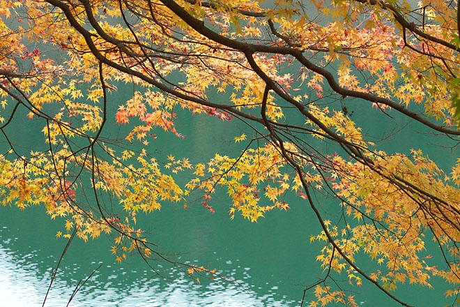 湖畔の秋~生野銀山湖~_c0067040_21452363.jpg