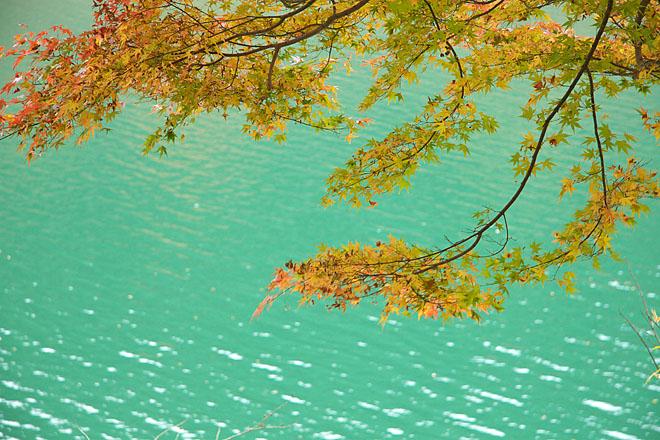 湖畔の秋~生野銀山湖~_c0067040_21565968.jpg