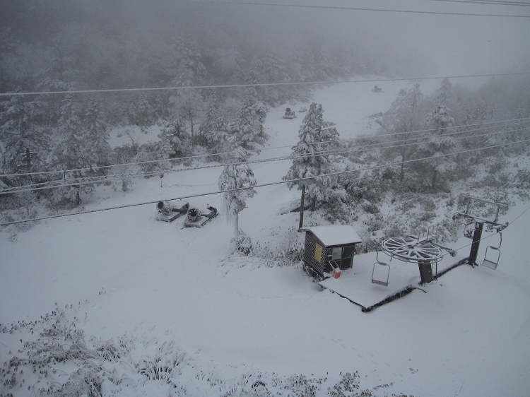 待望の天然雪_a0057828_16142913.jpg