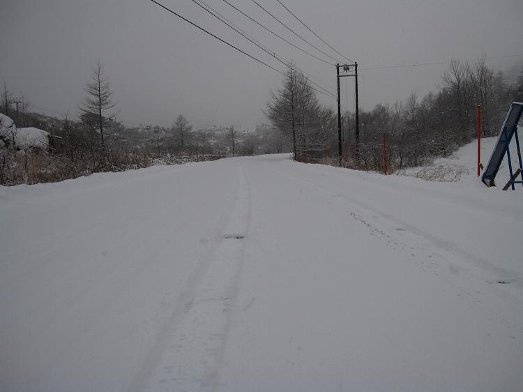 待望の天然雪_a0057828_1616044.jpg