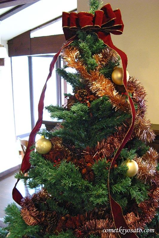 清里でクリスマスはいかが?_b0179231_1173717.jpg