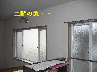 f0031037_17305931.jpg