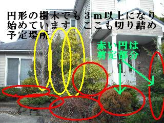 f0031037_1874100.jpg