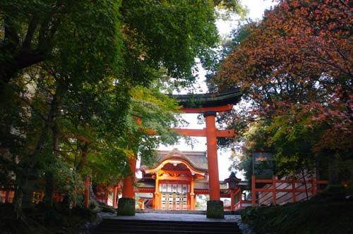 秋の九州古代文化の旅で見たこと   第7日  _e0187146_22415842.jpg