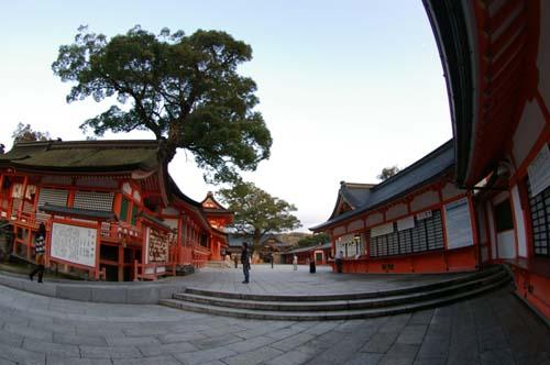 秋の九州古代文化の旅で見たこと   第7日  _e0187146_22421778.jpg