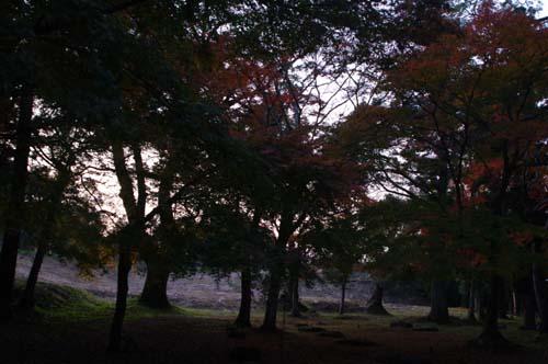 秋の九州古代文化の旅で見たこと   第7日  _e0187146_22431345.jpg
