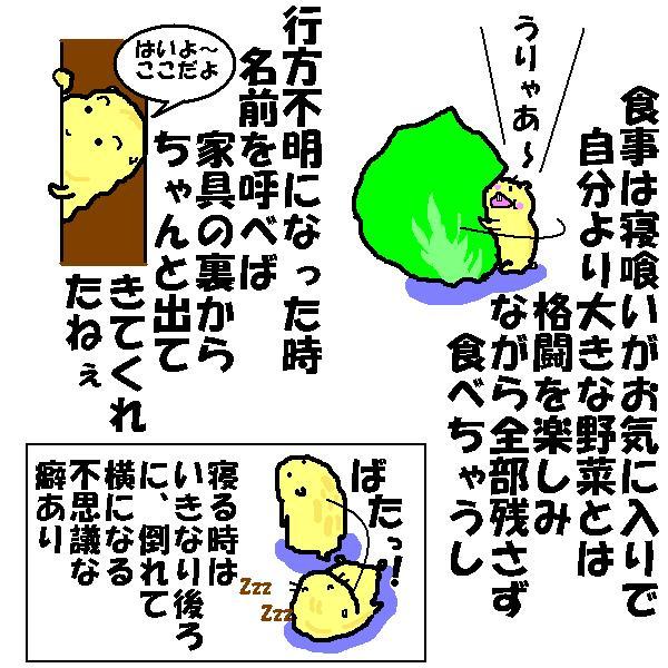 f0096569_22112861.jpg