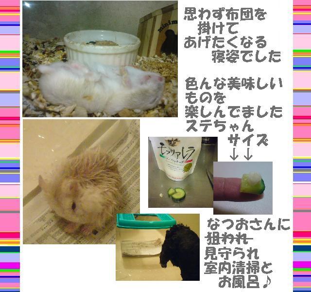 f0096569_2235186.jpg