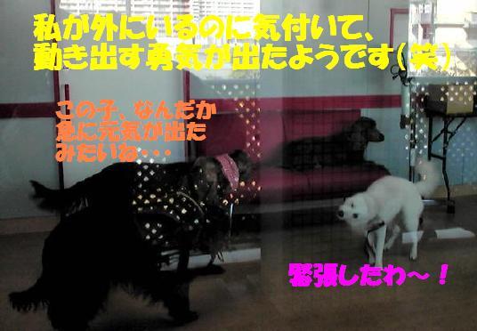 f0121712_072036.jpg