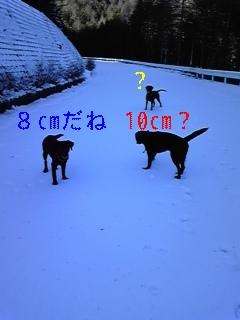 f0148927_171743.jpg
