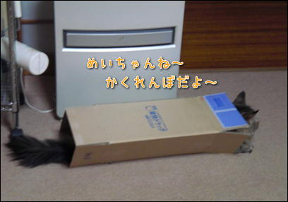 d0139352_025109.jpg