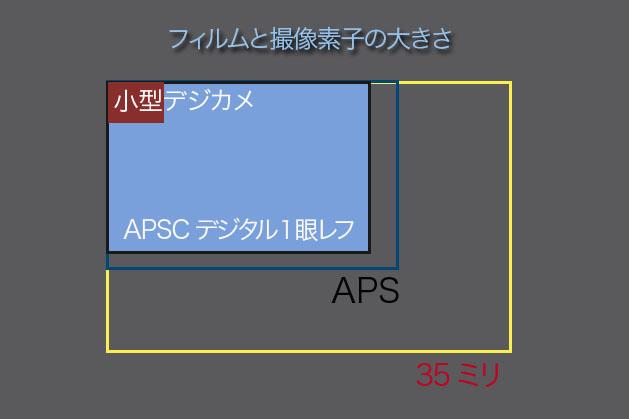 f0103459_135268.jpg