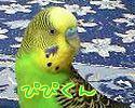 f0196665_20391456.jpg