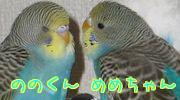 f0196665_22124272.jpg