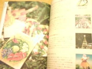 f0204368_20133946.jpg