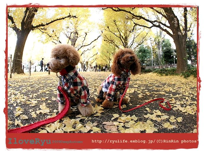 b0079792_2261251.jpg