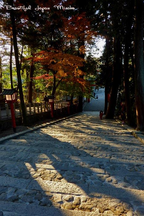 吉田神社 帰り道 12月1日_c0067206_1135559.jpg