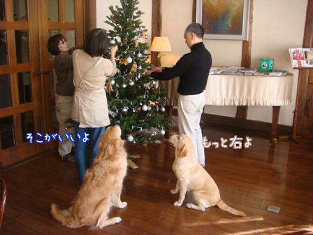 f0064906_1826939.jpg