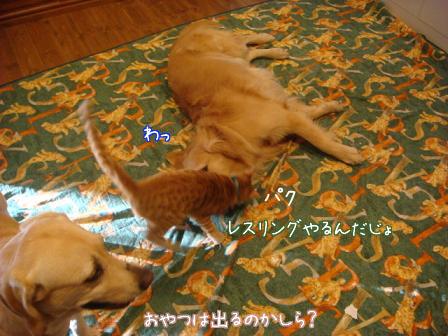 f0064906_18331459.jpg