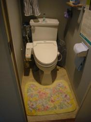 トイレのリフォーム_f0140817_2126187.jpg