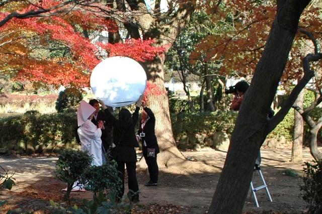 晩秋の「じゅんさい池緑地」_f0012718_22541729.jpg