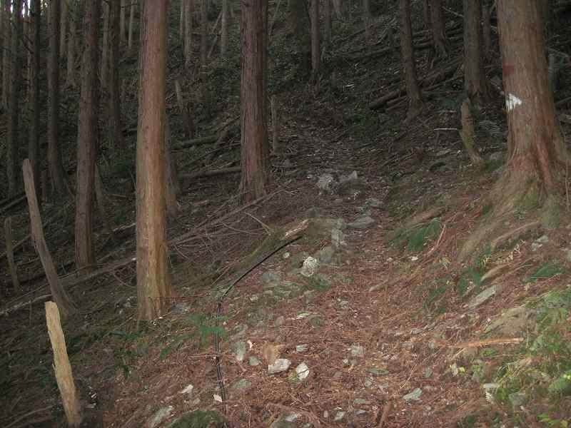 若山集落跡へ_c0109133_20274141.jpg