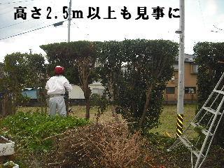 f0031037_1922392.jpg